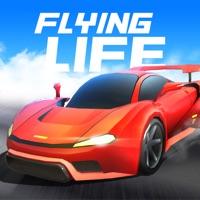 飞驰人生:经营与飞车